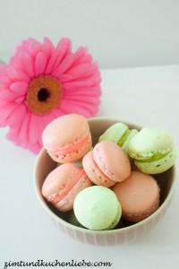 Vanille-Himbeer-Pistazie-Macarons-150811-2