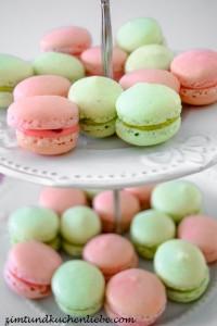 Vanille-Himbeer & Pistazie-Macarons