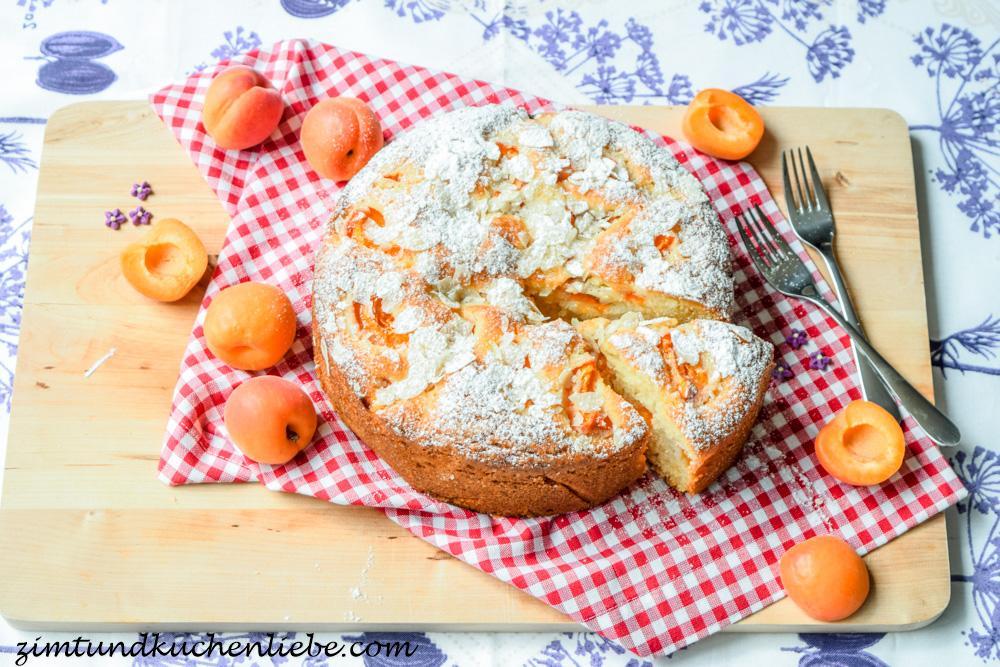 Aprikosenkuchen-160601-3